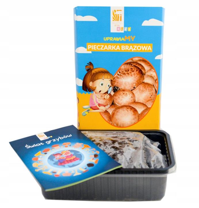 zestaw dla dzieci do uprawy grzybów
